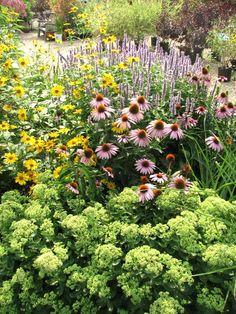 Garden Ideas New England perennial garden ideas | taming the weedy monster – how to