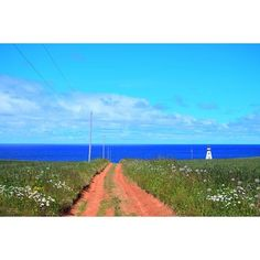 【matago_rena】さんのInstagramをピンしています。 《3日目の灯台巡りで最初に行った灯台。この写真今回の旅で1番お気に入りかもしれん 青い海、水色の空、白い雲、そして何と言ってもこの赤土の道のコントラストが美しすぎる 道沿いにある花たちも良い味出しとる✨ 遠くに小さく見える灯台も可愛すぎて、ここの景色は一生忘れんと思う。 ここの赤土の道をずっと奥から歩いてきて灯台見えた時、本当に幸せな気持ちになった。 絶対にまた行く!! #カナダ#プリンスエドワード島#灯台#海#空#雲#絶景#旅#旅行#写真#加工なし#canada#princeedwardisland #pei#lighthouse#nature#beautiful#scenery#travel#travelgram#photo#noeffect#nikon》