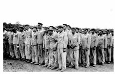 This photo shows homosexual prisoners in Buchenwald concentration camp, recognisable by the pink triangles on their striped prison uniforms.