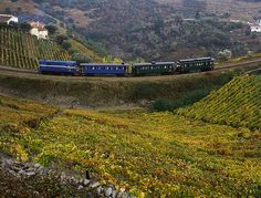 Historic Train in Douro Valley, Porto and North Region, via Flickr., Portugal