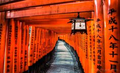 Fushimi Inari Taisha - thousands of torii gate World Best Photographer, Fushimi Inari Taisha, Torii Gate, Temple, Mountain Trails, Amazing Pics, Best Photographers, Travel Photos, Travel Ideas