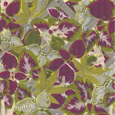 SS11 Hothouse Print by Craig Redman