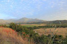 #Golden #Mountains #Fields #Casablanca #Chile #Roadtrip #Nature #Landscape #Blue #Sky #Impulse #Earth #Miss #Miri #Travel #Photography