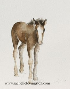 Hey, I found this really awesome Etsy listing at https://www.etsy.com/listing/182399991/horse-nursery-art-print-horse-nursery