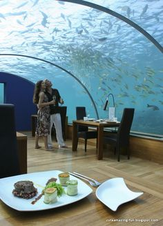 Undersea Resturant in Maldives #tropical #travel