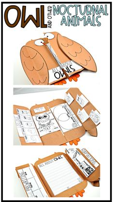 This unit provides interactive science activities to teach all about owls & other nocturnal animals! Tie owls & nocturnal animals to your science standards with this All About Owls and other Nocturnal Science Notebook Cover, Science Notebooks, Notebook Covers, Nocturnal Animals, Owl Activities, Montessori Activities, Interactive Activities, Owls Kindergarten, Owl Writing