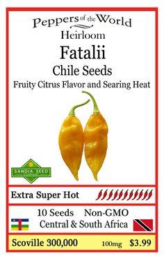Fatalii - An extremely hot heirloom chile with fruity citrus flavor. http://www.sandiaseed.com/collections/hot-pepper-seeds/products/fatalii