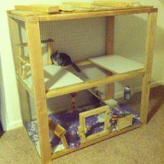 The right chinchilla cage is the adequate size. URL: http://chinchilla.co/ FB fan Page: https://www.facebook.com/chinchilla.co