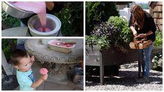 Harvesting Strawberries & Making Ice Cream! 🍓🤤🍦// Garden Answer Keto Ice Cream, Make Ice Cream, Ice Cream Recipes, Kitchenaid Blender, Homemade Strawberry Ice Cream, Berry Baskets, Veg Garden, Hobby Farms, Garden Supplies