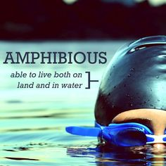 Amphibious: Able to live both on land & water.