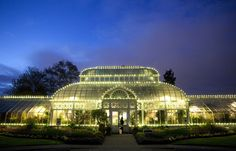 """""""Botanical Exotica"""" at Volunteer Park Conservatory   Picture This   The Seattle Times"""