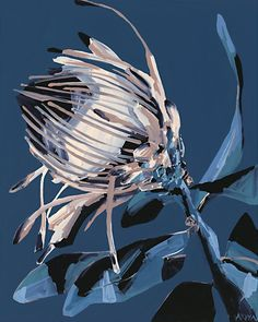 Meet the artist responsible for Ronnie and Georgia's gorgeous protea hallway artwork. Perth-based artist, Anya Brock, is responsible for the gorgeous protea artwork featured in Ronnie and Georgia's hallway. Painting Inspiration, Art Inspo, Protea Art, Protea Flower, Australian Native Flowers, Floral Artwork, Meet The Artist, Art Graphique, Flower Art