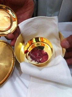 "Eucharistic Miracle in ""Maria Mother of the Church"" church in Mexico at pm on July Just before the beginning of a Eucharistic Congress. Catholic Religion, Catholic Quotes, Catholic Prayers, La Salette, Jesus E Maria, True Faith, Divine Mercy, Blessed Mother, Roman Catholic"