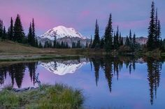Sunrise at Mt Rainier National Park.  Photo from KOMO by Cascade Wilderness Photography.