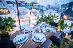 Bubble Tent, Pavilion, Bubbles, Table Decorations, Camping Ideas, Luxury, Toronto, Design, Home Decor