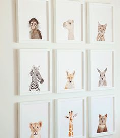Animal Nursery Prints from the Animal Shop by Sharon Montrose Baby Bedroom, Nursery Room, Boy Room, Girl Nursery, Kids Bedroom, Nursery Decor, Nursery Ideas, Safari Nursery, Nursery Prints