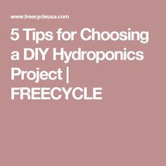 5 Tips for Choosing a DIY Hydroponics Project | FREECYCLE