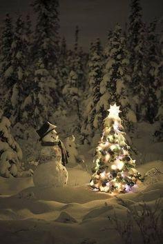 Sweet little Snowman & a Sweet little Christmas Tree :) Christmas Scenes, Noel Christmas, Little Christmas, Country Christmas, All Things Christmas, Winter Christmas, Magical Christmas, Christmas Tree Images, Winter Snow