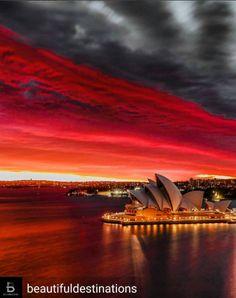 Perfeita união entre o maravilhoso pôr do sol e a impressionante Casa da Ópera de Sydney! (Foto 📷: @theinkedshooter)  #ctoperadora #seupontodepartida #destination #amazing #beautifuldestinations #trip #viajar #wanderlust #viagem #wanderlusting #sydney #australia #pôrdosol #shootofthedays #destino #sunset #sidneyoperahouse