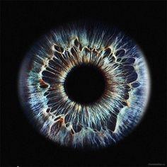 iris eye close up Pretty Eyes, Cool Eyes, Beautiful Eyes, Photo Oeil, Realistic Eye Drawing, Eye Close Up, Behind Blue Eyes, Fotografia Macro, Aesthetic Eyes