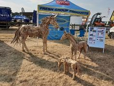 Latest news about our driftwood sculptures and driftwood furniture and related issues from our driftwood horse website, a sideline of Fresh Group Products. Driftwood Furniture, Driftwood Sculpture, New Forest, Outdoor Settings, Animal Sculptures, Teak, Art Pieces, Horses, Display