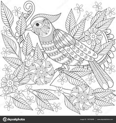 adult anti stress coloring page with tropical bird hand drawn zentangle parrot sitting on blooming tree branch for colouring bool art therapy
