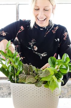 """Planting a Wally Eco in Stone with a 4"""" ZZ plant, a 4"""" Peperomia, a 3"""" Neon Philodendron, and a 4"""" Nerve Plant. We call it, the New Age Bouquet."""