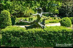 Rosengarten im Humboldthain - Jagdgöttin Diana (Juni 2017) #Humboldthain #Brunnenviertel #Berlin #Deutschland #Germany #biancabuergerphotography #igersgermany #igersberlin #IG_Deutschland #IG_berlincity #ig_germany #shootcamp #pickmotion #berlinbreeze #diewocheaufinstagram #berlingram #visit_berlin #Wedding #canon #canondeutschland #EOS5DMarkIII #5Diii #Park #landscape #Landschaft #Statue