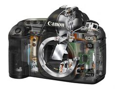 Canon EOS 6D Feature !!