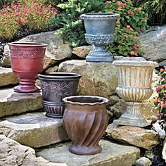 Topiary Urns