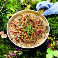 Swedish reindeer stew with golden chanterelles and lingonberries