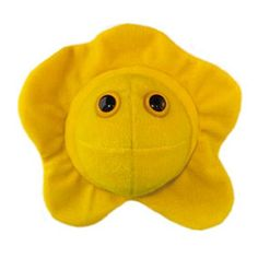 Giant Microbes Herpes (Herpes Simplex Virus 2) Giant Microbes http://www.amazon.com/dp/B000W6SBXU/ref=cm_sw_r_pi_dp_2-IHub0ZGTGY0