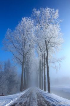 UT.4 E7 Esta imagem está relacionada com UT.6 pois é uma paisagem que nos remete para o Inverno.