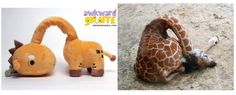 "isatv: "" What do a giraffe, snail, and seal all have in common? They've all been deemed AWKWARD by Wong Fu Productions! Funny Animal Memes, Funny Animal Videos, Funny Animals, Wong Fu Productions, Awkward Animals, Awkward Moments, Giraffe, Hilarious, Humor"