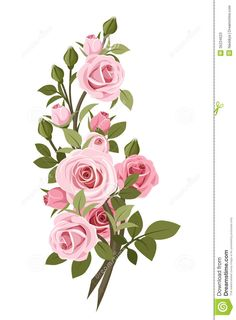 Viewing Gallery For - Pink Roses Vintage Background
