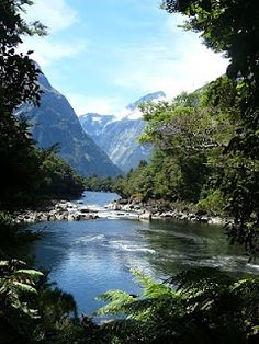 Milford Track - New Zealand