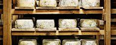 Los mejores quesos de #Cantabria #Spain