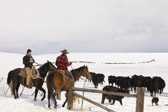 Ranch life in Avon, MT