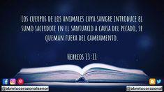 #DeberesCristianos #APonerEnPráctica #Dios #AbreTuCorazónAlSeñor #Fe