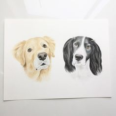 PET PORTRAIT, Custom portrait, Pet Custom Portrait, 9x12/11x15 inches. by DonDonArt on Etsy https://www.etsy.com/ca/listing/585691321/pet-portrait-custom-portrait-pet-custom