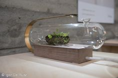 Terra Collection, Morgan Ruben (Milano Design Week 2015, Ventura Lambrate) #MilanoDesignWeek #fuorisalone #SaloneDelMobile