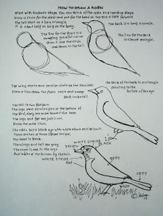 How to Draw Worksheets for The Young Artist: How To Draw A Robin Bird. Drawing Worksheet For A Young Artist. by esmeralda Bird Drawings, Easy Drawings, Animal Drawings, Drawing Birds, Robin Drawing, Drawing Tutorials, Drawing Techniques, Art Tutorials, Drawing Projects