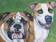 Tater the English Bulldog and Chance the Pit Bull Terrier by Bethany.