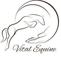 Afbeeldingsresultaat voor paard logo