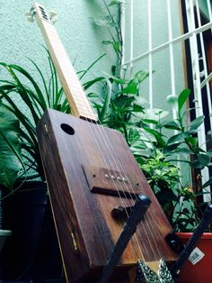 Ready ! Another project Cigar Box Guitar completed .