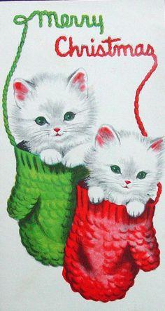 Cute Kittens in Mittens