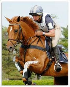 Teddy O'Connor, famous pony that competed at Rolex. The jumps were  taller than he was!