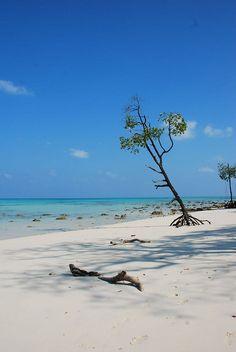 Havelock Island. Andamans India