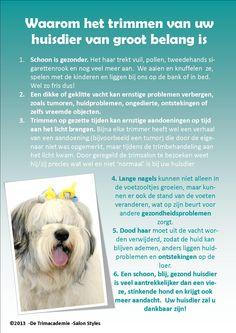 Waarom het trimmen van uw huisdier van groot belang is! #trimsalon #trimopleiding #honden