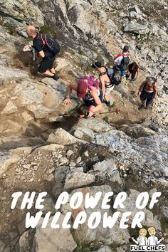 The power of willpower - Fuel Chefs - Fuel your body Attention Span, Willpower, Our Life, Losing Weight, Happy Life, Dreaming Of You, Healthy Lifestyle, Goal, Competition